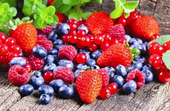 Гранты для производителей ягод