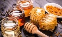 Moldova, țara de unde curge miere: Ce a generat creșterea de 10 ori a exporturilor producției apicole