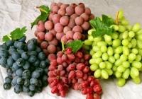 Молдавский фермер будет экспортировать виноград в Румынию