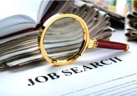 În căutarea jobului pierdut. TOP 5 cele mai căutate domenii