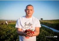 Фермер из Бачоя выращивает экологически чистую клубнику