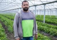 Soluții privind cultivarea căpșunilor în seră de la Fermierul Dmitrii Bass