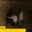 Тайны подземных туннелей: Кагул, Хынчешты, Кишинёв