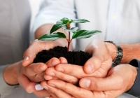 Трёхлетний план поддержки малых и средних предприятий