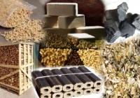 Развитие рынка биоэнергетики: новые технологии и рабочие места