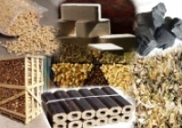 Viitorul pieței de energie din biomasă: noi tehnologii și locuri de muncă
