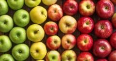 На российской таможне в молдавских яблоках нашли муху-горбатку. Груз будет уничтожен