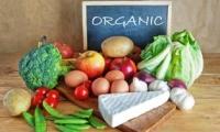 Granturi pentru produse ecologice