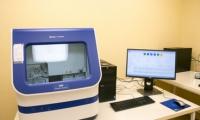 Au fost stabilite tarifele pentru expertizele genetice făcute în Republica Moldova