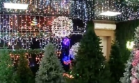 На молдавском заводе по производству ёлок сообщили цены на них к Новому году