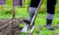 В садоводстве потребность в рабочей силе покрывается всего на 13%