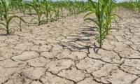 Засушливая зима может оставить Молдову без воды