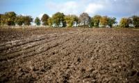 A fost votată o lege care permite proprietarilor să-și consolideze terenurile