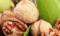 Реакция Ассоциации экспортеров орехов на ультиматум парламентской комиссии