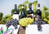 Există riscul ca exportul de vinuri din acest an, să fie cel mai mic din ultimii 20 de ani
