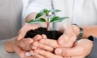 Поддержка субъектов малого и среднего бизнеса