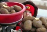Deutsche Welle: Deși țară agrară, Moldova importă cantități uriașe de cartofi, pătrunjel și mere