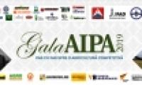 """AIPA anunță startul votării on-line a candidaturilor la premiile """"Gala AIPA 2019"""""""